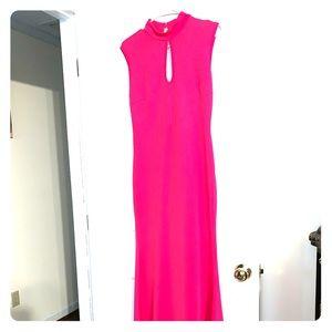 Fuscia Gown